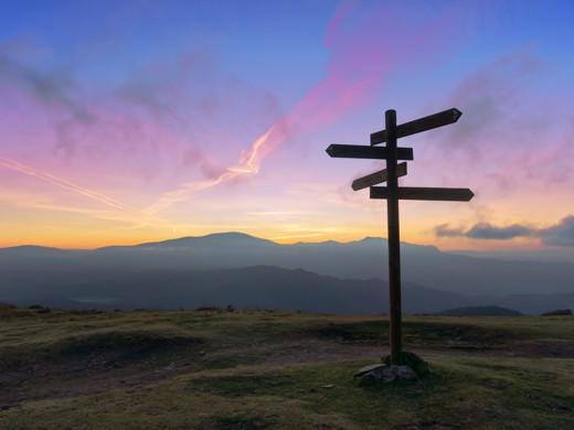Market Trace for Tourism - Signpost