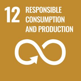 UN SDG Goal 12 - Responsible Consumption and Production