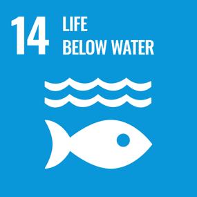UN SDG Goal 14 - Life Below Water