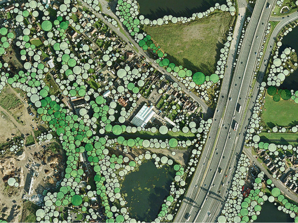 National Tree Map over aerial imagery